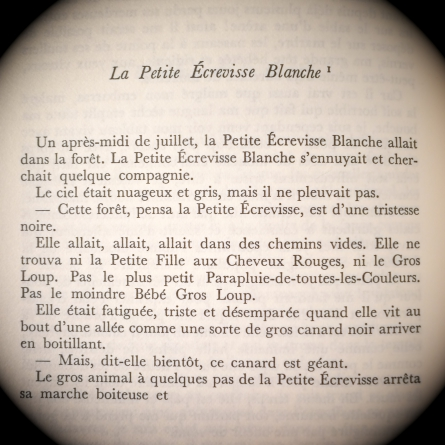 La Petite Écrevisse Blanche, Georges Bataille